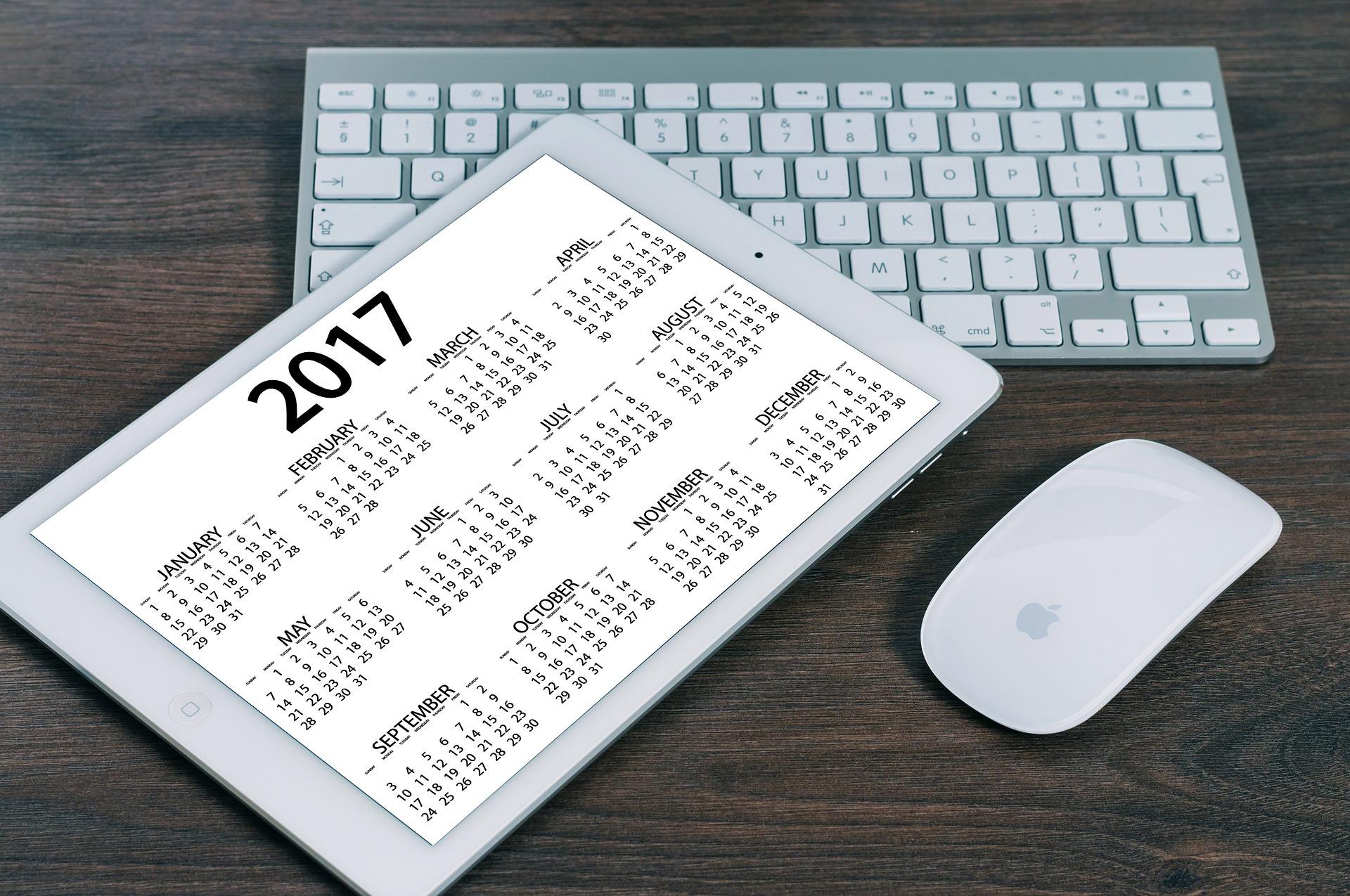 consultation janvier 2017